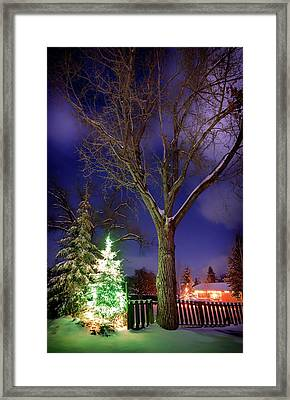 Framed Print featuring the photograph Silent Night by Cat Connor