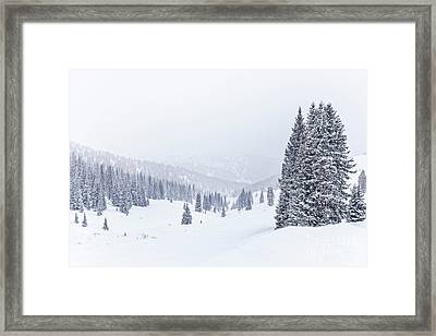 Silent Snow Framed Print by Evelina Kremsdorf
