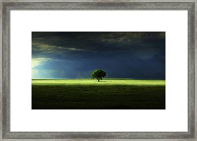 Silent Solitude Framed Print
