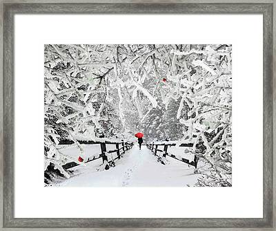 Silent Walk In The Snow Framed Print