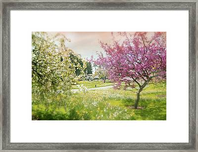 Framed Print featuring the photograph Silent Wish You Make by Diana Angstadt