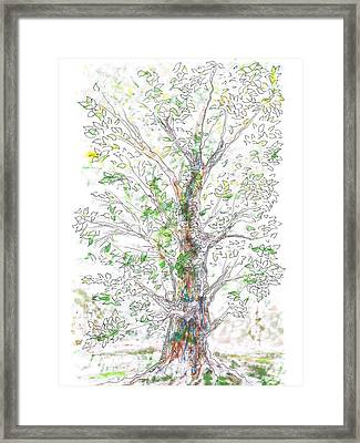 Silent Witness Framed Print by Regina Valluzzi