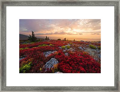 Framed Print featuring the photograph Silent Wonder by Bernard Chen