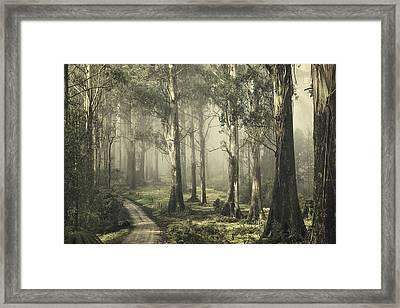 Silently Still Framed Print