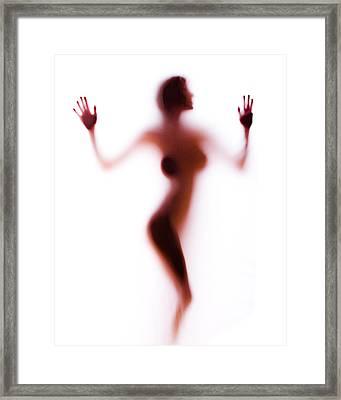 Silhouette 14 Framed Print