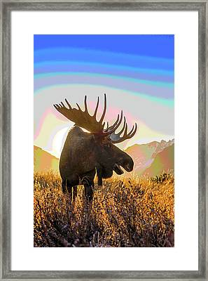 Silhouetted By The Sunrise Abstract Framed Print