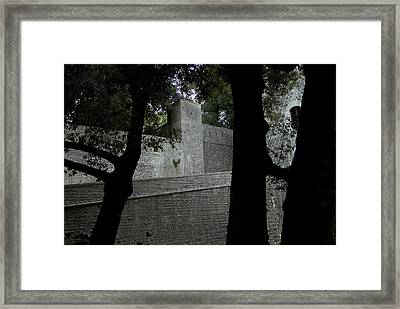 Silhouetted Trees In Front Of The Wall Framed Print by Todd Gipstein