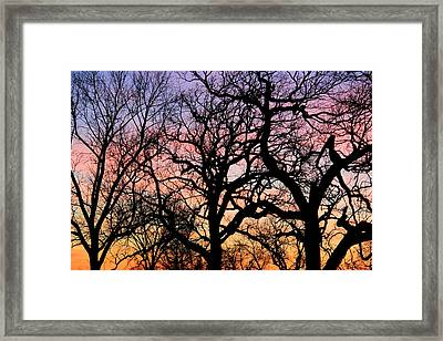 Framed Print featuring the photograph Silhouettes At Sunset by Chris Berry