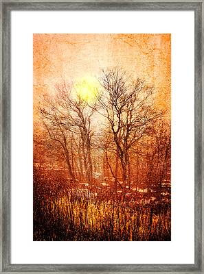 Silhouettes At Sunset Framed Print