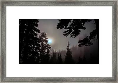 Silhouettes In The Mist 2008 Framed Print