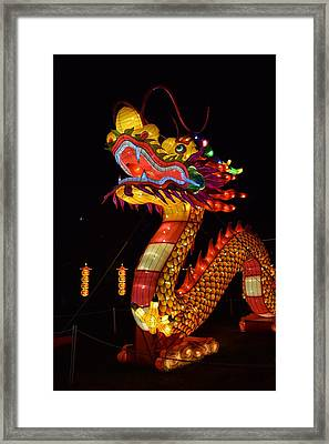 Silk Dragon Framed Print