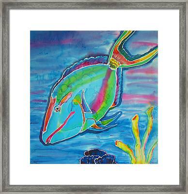 Silk Parrotfish Framed Print