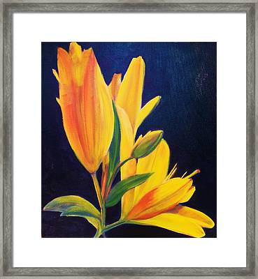 Silly Lily Framed Print by Dana Redfern