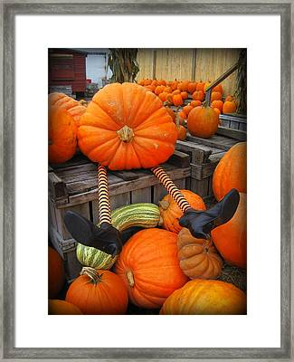 Silly Pumpkin Framed Print by Suzanne DeGeorge