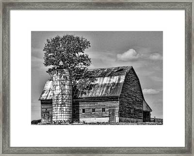 Silo Tree Black And White Framed Print