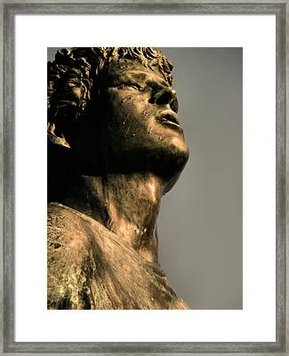 Silver And Bronze Framed Print by Tingy Wende