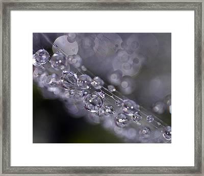 Silver Baubles Framed Print