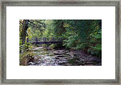 Framed Print featuring the photograph Silver Creek Falls #38 by Ben Upham III