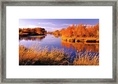 Silver Creek Fly Fishing Only Framed Print