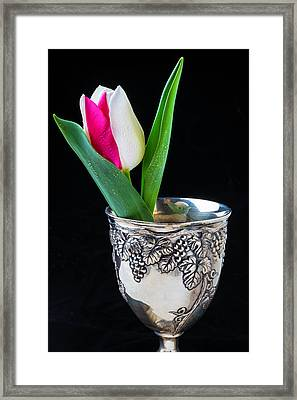 Silver Cup And Tulip Framed Print
