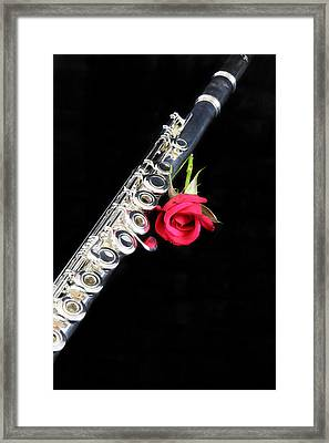 Silver Flute Red Rose Framed Print by M K  Miller