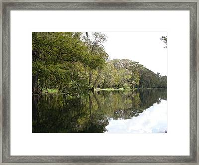 Silver Green Framed Print
