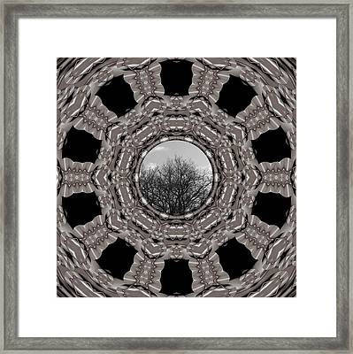 Silver Idyl Framed Print by Pepita Selles