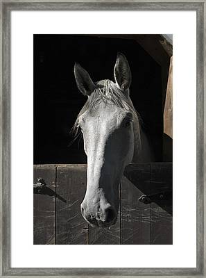 Silver Framed Print by Jack Goldberg