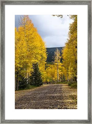 Silver Jack Reservoir 6 Framed Print by Paul Cannon