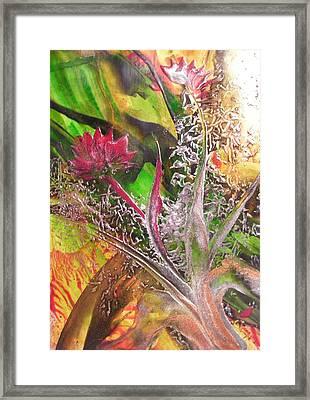Silver Lace Framed Print by John Vandebrooke