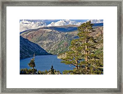 Silver Lake Pines Framed Print by Chris Brannen