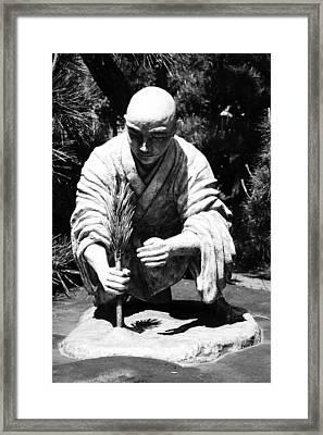 Silver-monk Framed Print by Juergen Weiss