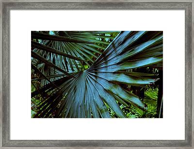 Silver Palm Leaf Framed Print by Susanne Van Hulst