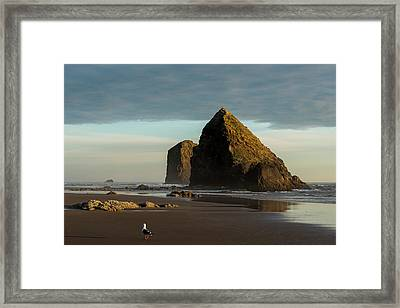 Silver Point Seastacks Framed Print