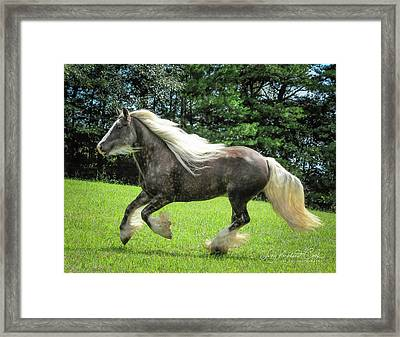 Silver Reign Wow Framed Print by Terry Kirkland Cook