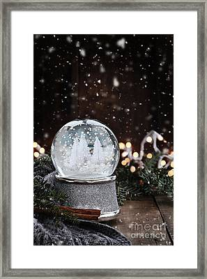 Framed Print featuring the photograph Silver Snow Globe by Stephanie Frey