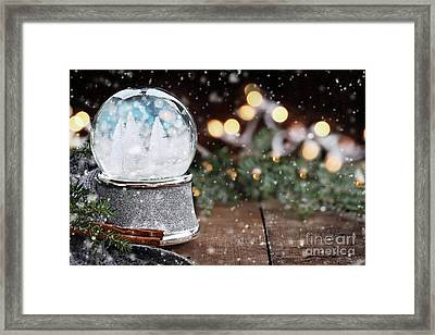 Framed Print featuring the photograph Silver Snow Globe With White Christmas Trees by Stephanie Frey