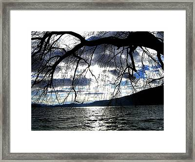 Silver Sunset Framed Print