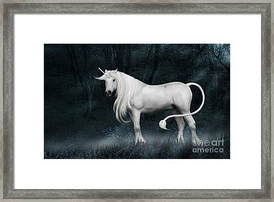 Silver Unicorn Standing In Miisty Forest Framed Print