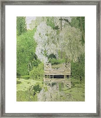 Silver White Willow Framed Print