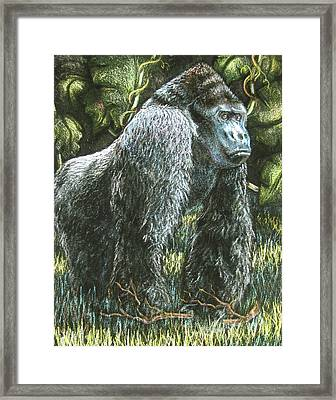Silverback-king Of The Mountain Mist Framed Print