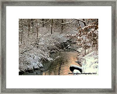 Silvered Shores Framed Print by Tami Quigley