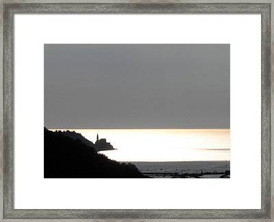 Framed Print featuring the photograph Silvery by Dragica  Micki Fortuna