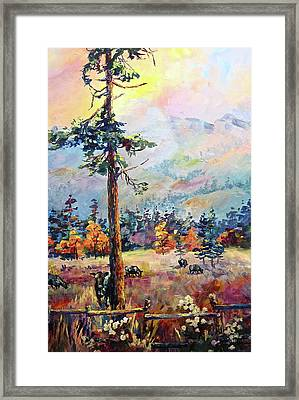 Similkameen Valley Framed Print