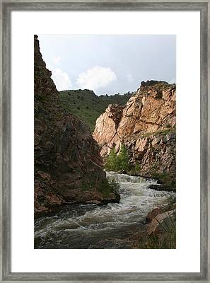 Simple Beauty Framed Print by Cassandra Wessels