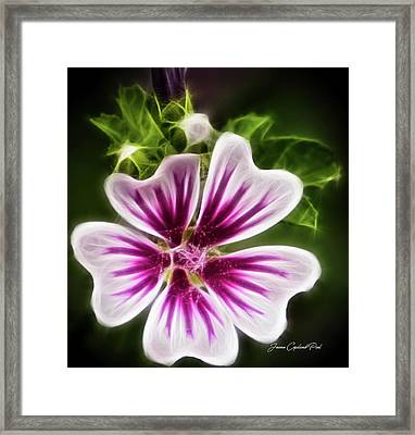 Simple Beauty Framed Print by Joann Copeland-Paul