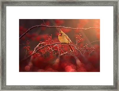 Simple Beauty Framed Print