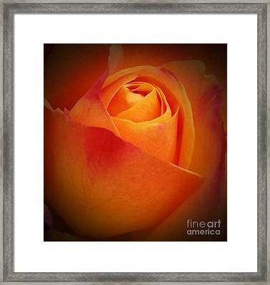 Simple Elegance  Framed Print by Chalet Roome-Rigdon