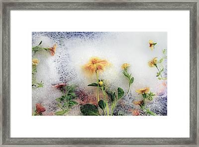 Simple Life Framed Print by Carmen Moise