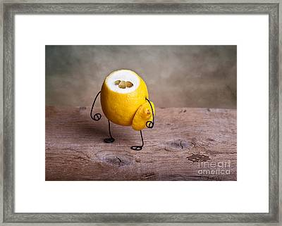 Simple Things 12 Framed Print by Nailia Schwarz